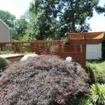 Pergola & Privacy Fence Stain