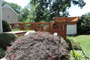 Pergola & Privacy Fence Stain